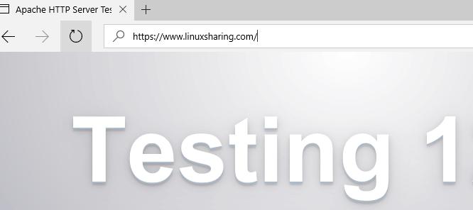 Verify Apache Webpage