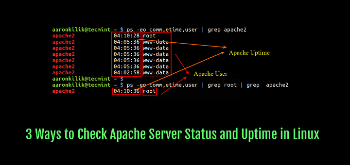 Check Apache Status Uptime in Linux