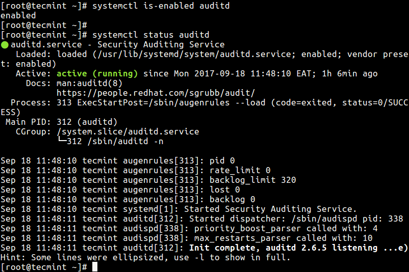 Check Status of Auditd Tool