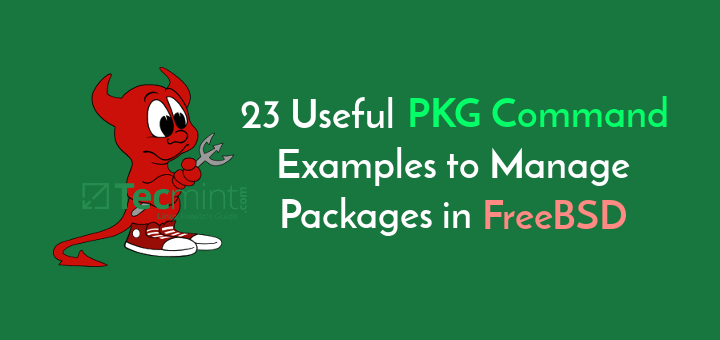 FreeBSD PKG Command Examples