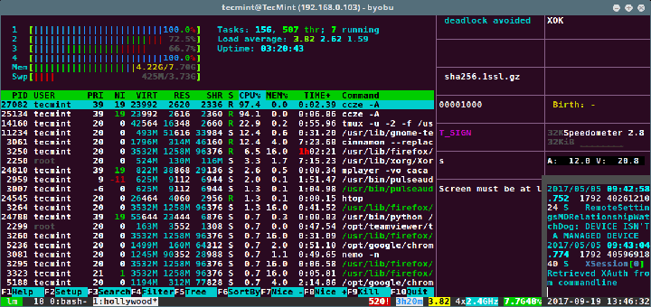 Hollywood Terminal for Linux
