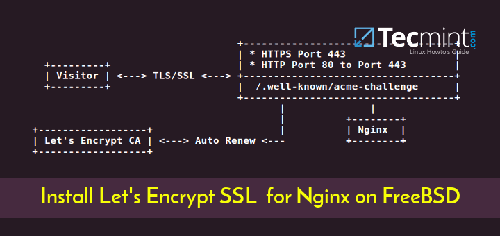 Install Lets Encrypt for Nginx on FreeBSD