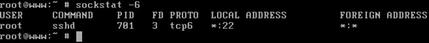 List IPv6 Opened Ports