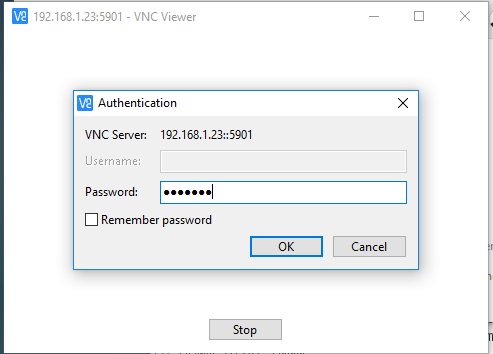 VNC Server User Password