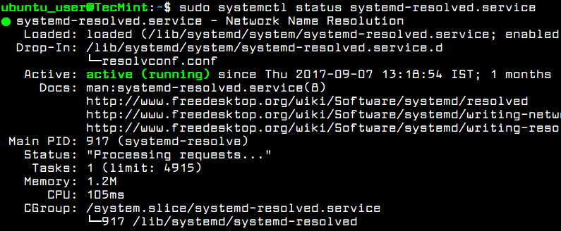 Check Systemd Resolved Status