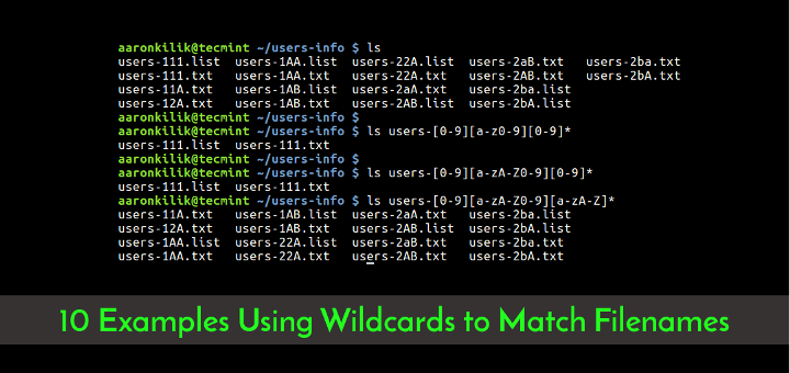 10 Practical Examples Using Wildcards to Match Filenames in