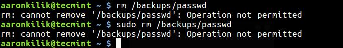 Delete Immutable File in Linux