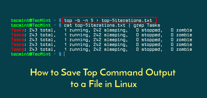 Save Top Command Output in File