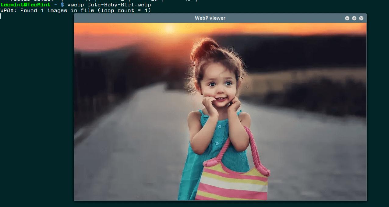 View WebP Format Image