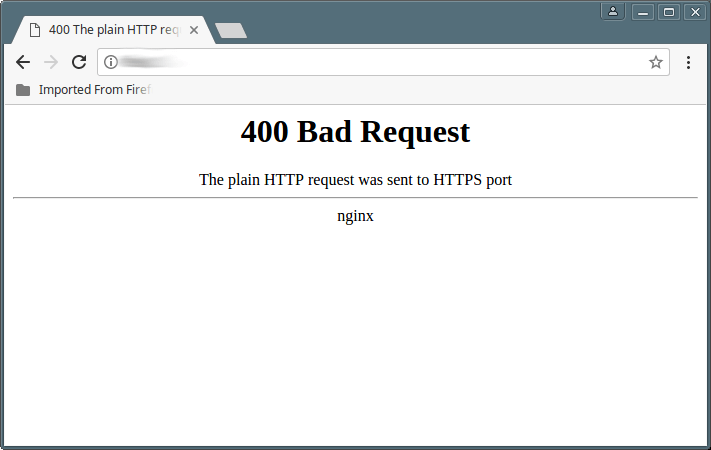 Nginx 404 Bad Request Error