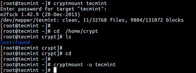 Access Encrypted Filesystem
