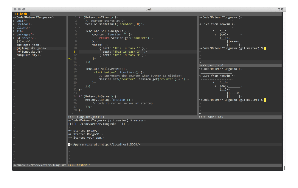 NeoVim Editor for Linux