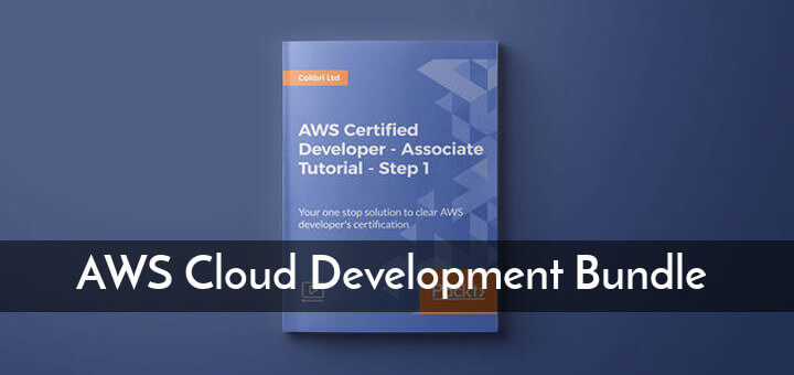 Learn AWS Cloud Development Course