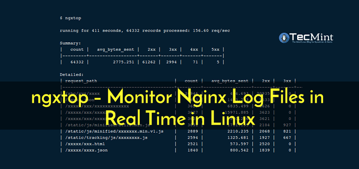Monitor Nginx Log Files in Real Time
