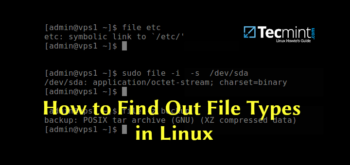 Find File Type in Linux