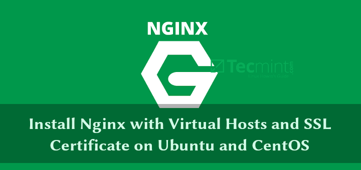 Install Nginx with Virtual Hosts and SSL Certificate