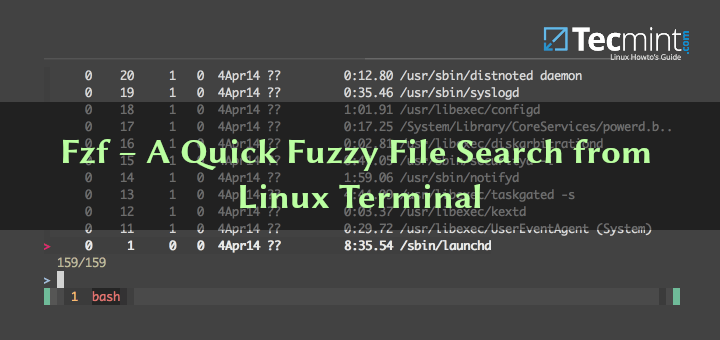 Fuzzy File Search from Linux Terminal
