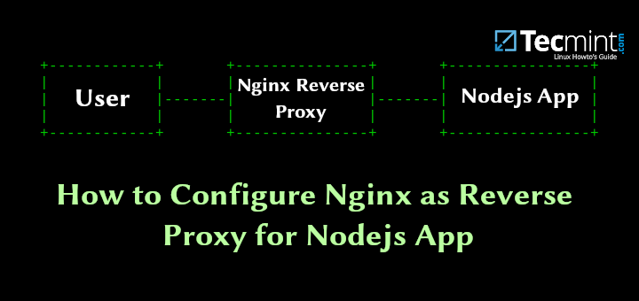 Nginx as Reverse Proxy for Nodejs App