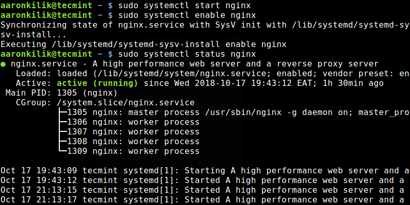 Start and Check Nginx Status