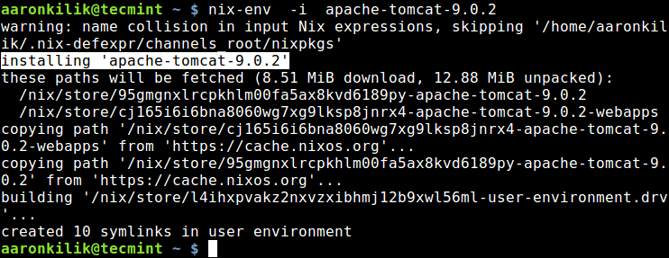 Install a Package Using Nix