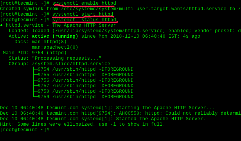 Enable and Start Apache on RHEL 8