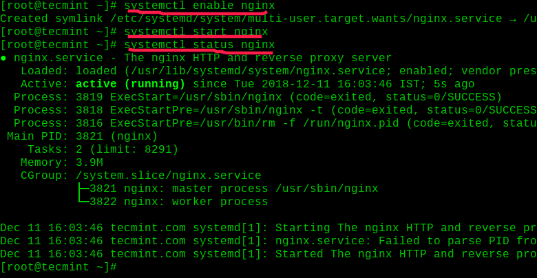 Enable and Start Nginx on RHEL 8