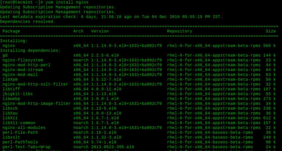 Install Nginx on RHEL 8