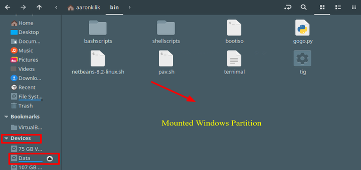 Mount Windows Partitions in Ubuntu