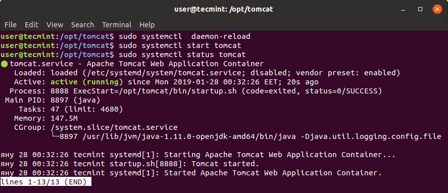 Verify Apache Tomcat Status