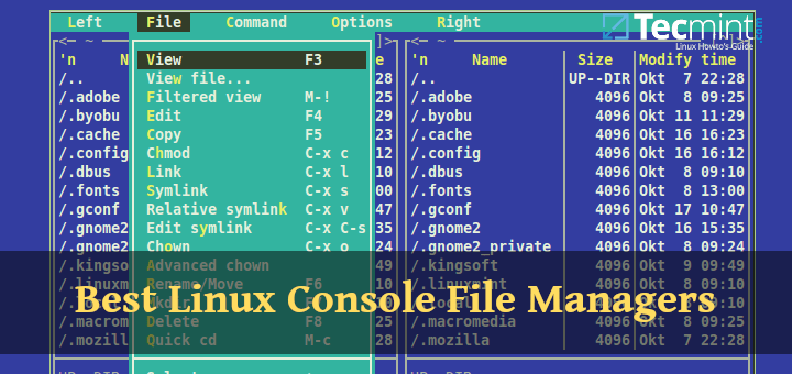 Linux Terminal File Managers