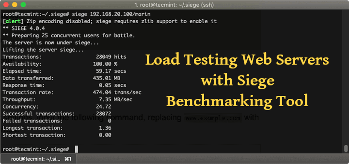 Load Testing Web Servers with Siege