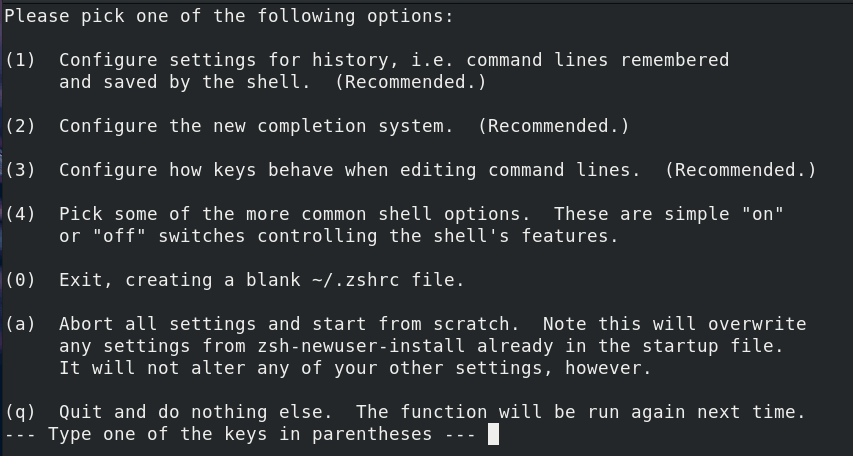 Zsh Configuration Options