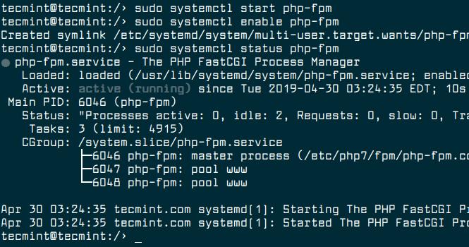 Start PHP-FPM Service