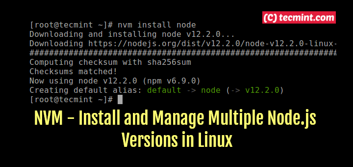 Install Multiple Nodejs Versions in Linux