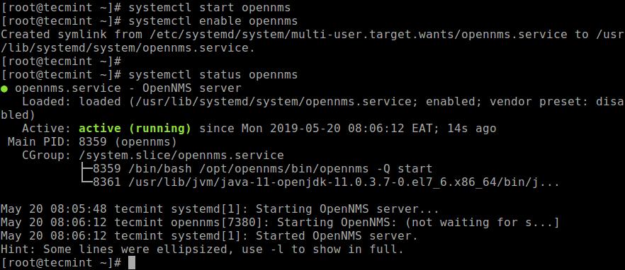 Verify OpenNMS Status