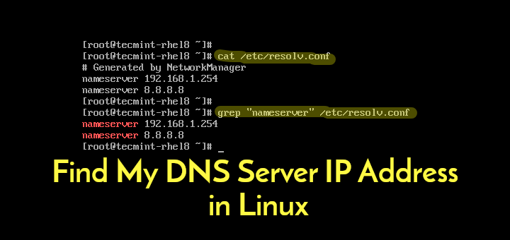 Find DNS Server IP Address in Linux