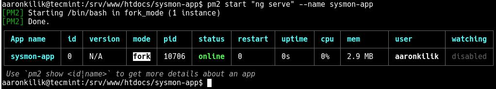 Run Angular App Forever