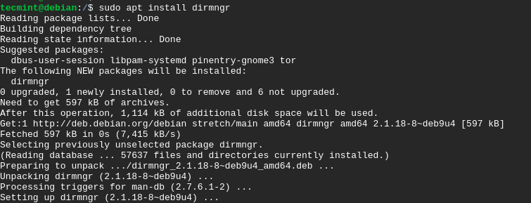 Install dirmngr on Debian 10