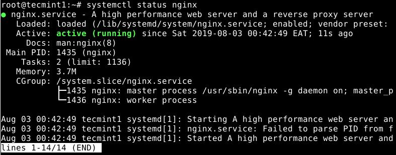 Check Nginx Status