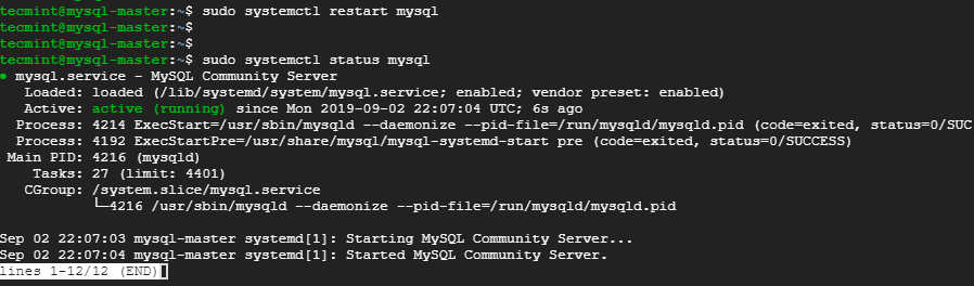 Restart and Check MySQL Status