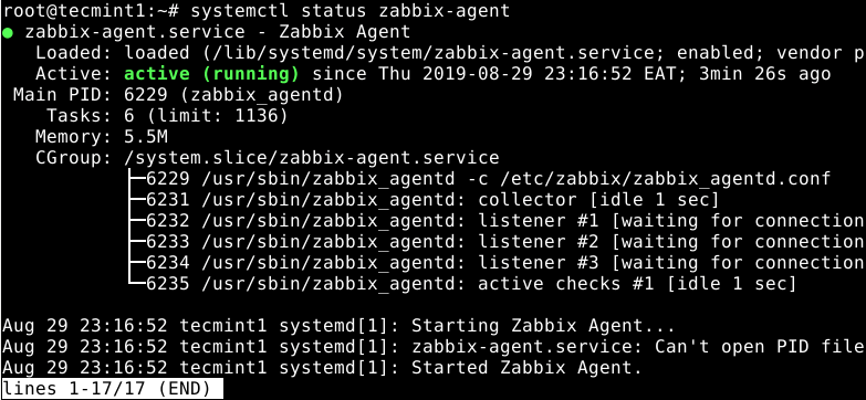 Check Zabbix Agent Status