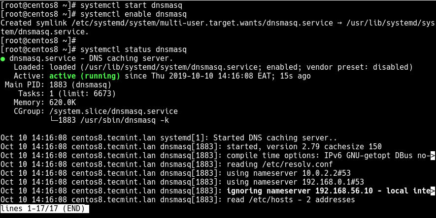 Start and Verify dnsmasq Status