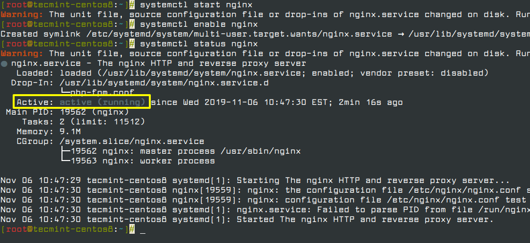 Start and Enable Nginx Server