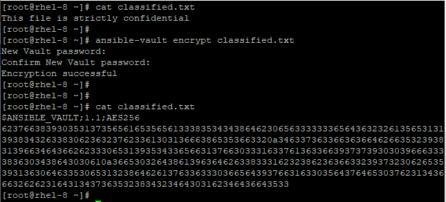 View Encrypted File
