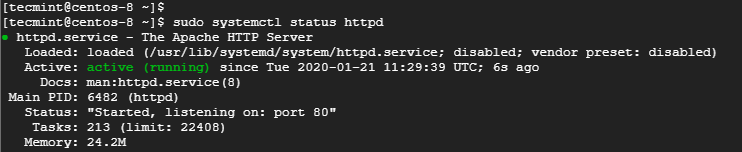 Check Apache Web Server Status