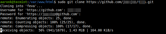 Clone Remote Git Repository