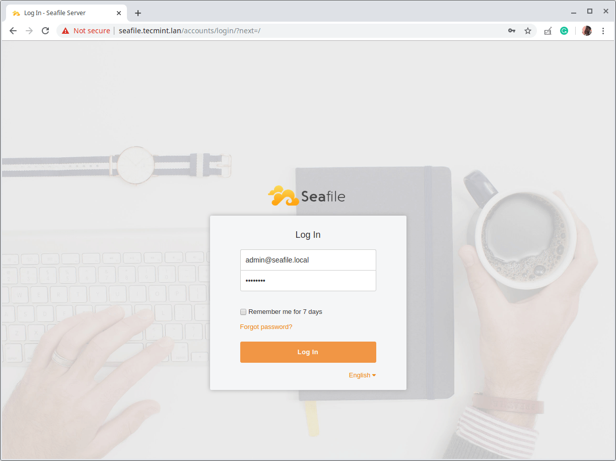 Seafile Login Interface