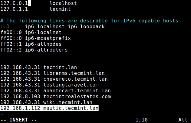 Setup Local DNS in Linux