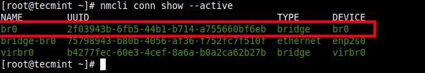 List Active Network Connection