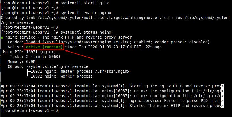 Verify Nginx Service Status